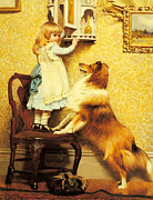 Sheltie Framed Prints - A Little Girl and her Sheltie Framed Print by Charles Burton Barber