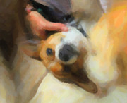 Cute Dogs Digital Art - A Little to the Left Please by Carolina Liechtenstein