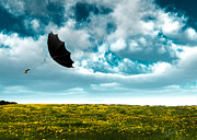Whimsical Photo Prints - A Little Windy Print by Bob Orsillo