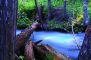 Creeks Art - A Log Over Fast Water  by Jeff  Swan