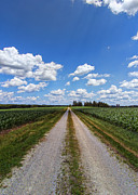 Corn Digital Art Prints - A Long Rural Road Print by Bill Tiepelman