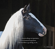 Gypsy Prints - A Lovely Horse with Verse Print by Terry Kirkland Cook