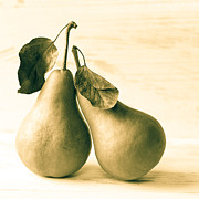 Pear Art Photo Prints - A Loving Pear Print by Constance Fein Harding