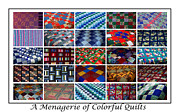 Blue Quilts Tapestries - Textiles Posters - A Menagerie of Colorful Quilts  Poster by Barbara Griffin