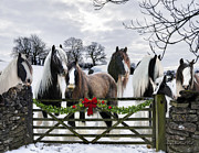Gypsy Horse Framed Prints - A Merry Gypsy Christmas Framed Print by Terry Kirkland Cook