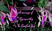 Gail Matthews - A Message of Sympathy to comfort you