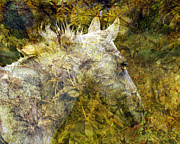 Horse Head Digital Art - A Midsummer Nights Mare by Judy Wood