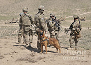 Helping Prints - A Military Working Dog Accompanies U.s Print by Stocktrek Images