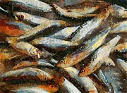 A Morning Catch Of Sardines Print by Dragica  Micki Fortuna