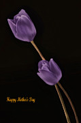 Violet Prints Framed Prints - A Mothers Day Wish Framed Print by Thomas York