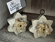 Grey Ceramics Metal Prints - A Natural Fit Metal Print by Amanda  Sanford