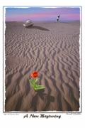Sandy Beach Prints - A New Beginning Print by Mike McGlothlen