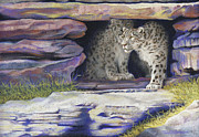 Wildcats Pastels Framed Prints - A New Day - Snow Leopards Framed Print by Tracy L Teeter