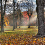 Sun Rays Photos - A November Morning Square by Bill  Wakeley