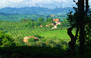 Tuscan Hills Prints - A Painting The Tuscan Countryside Print by Mike Nellums