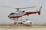 Air Jordan Posters - A Pair Of As350 Squirrel Helicopters Poster by Ofer Zidon