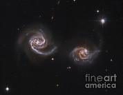 A Pair Of Interacting Spiral Galaxies Print by Roberto Colombari