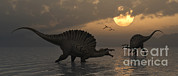 Roaming Posters - A Pair Of Spinosaurus Dinosaurs Fishing Poster by Mark Stevenson