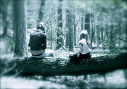 Respite Photos - A Pause in the Woods by Tracy Male