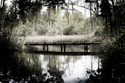 Bayou Digital Art - A Peaceful Bayou by Shelly Stallings