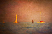 Sail Photographs Prints - A Perfect Summer Evening Print by Loriental Photography