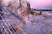 Sand Fences Prints - A Pink Sunrise Print by JC Findley