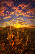 Phil Koch - A Place You Call Home