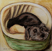 Toto Paintings - A Pup Named Scruffy by Lorelei Alvarez