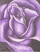 Marriage Framed Prints Framed Prints - A Purple Rose Framed Print by Margarett Beverly
