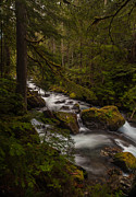 Northwest Framed Prints - A River Passes Through Framed Print by Mike Reid