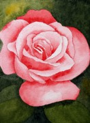 Flower Still Life Prints Prints - A Rose by Any Other Name Print by Brett Winn