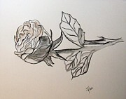 Cityscape Drawings - A Rose is a Rose by Janice Rae Pariza