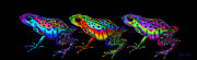 Amphibians Digital Art Prints - A Row of Rainbow Frogs Print by Nick Gustafson