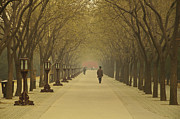 Beijing Framed Prints - A Royal Stroll Framed Print by Aaron S Bedell