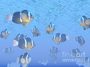 Yellowtail Clownfish Prints - A School Of Clownfish Swimming Print by Elena Duvernay