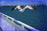Fauna Originals - A Seagull Takes Off by Janice Rae Pariza