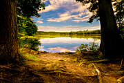 New England Landscape Prints - A Secret Place Print by Bob Orsillo