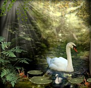 Swans... Mixed Media - A Shady Brook by Morag Bates