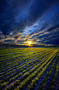 Phil Koch - A Short Piece Of Time
