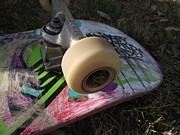 A Skateboard's True Colors Print by James Rishel