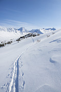 Kenai Peninsula Prints - A Ski Trail in the Mountains Print by Tim Grams