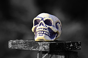 Image Photo Originals - A skull by Tommy Hammarsten