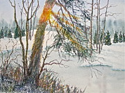 Carolyn Rosenberger - A Slice of Winter...