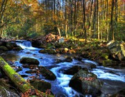 Autumn Scenes Photos - A Smoky Mountain Autumn by Mel Steinhauer