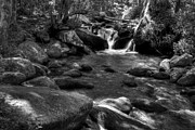 Creeks Prints - A Smoky Mountain Stream 3 bw Print by Mel Steinhauer