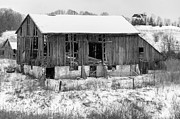 Winter Storm Prints - A Snowy Day monochrome Print by Steve Harrington