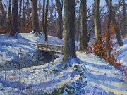 Todd Derr - A Snowy Path in the Woods