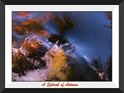 John  Malone - A Splash of Autumn