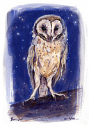 Western Sculpture Painting Prints - A Starry Night Owl Print by Gita Lloyd