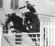 Young Man Prints - A Stunt Rider On Two Horses. Print by Underwood Archives